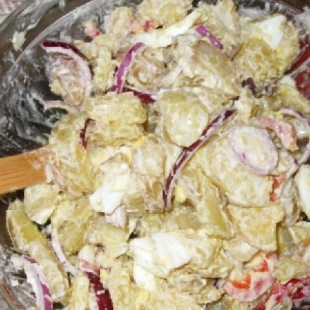 Ezen a képen: Krumplisaláta StellaMelanie konyhájából