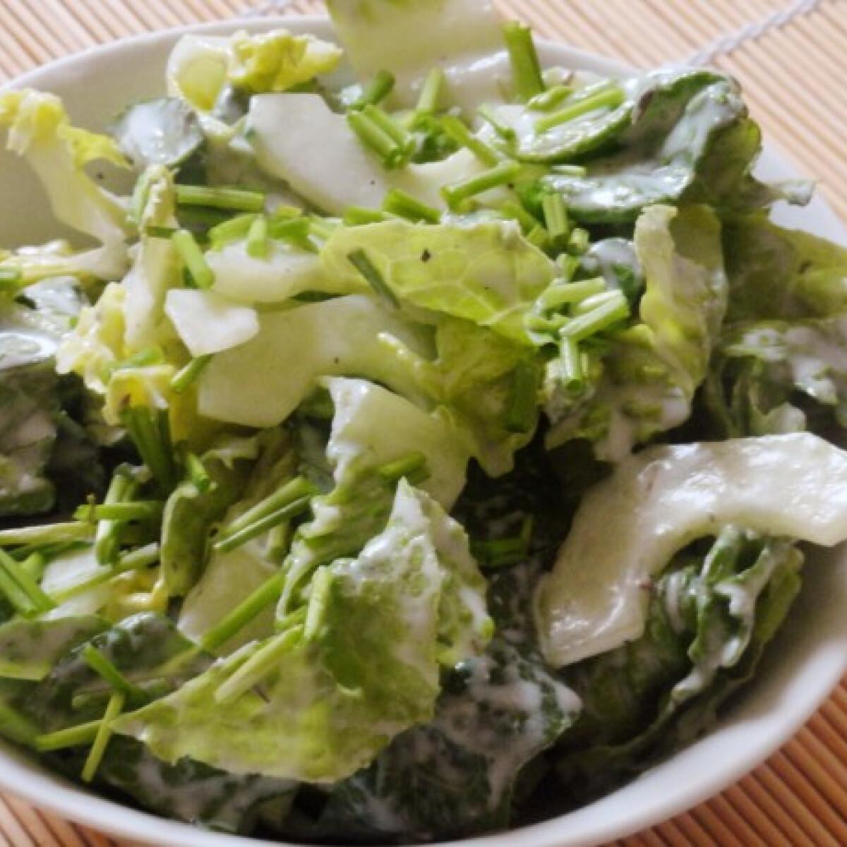 Ezen a képen: Uborkás római saláta kecskekrémsajtos öntettel