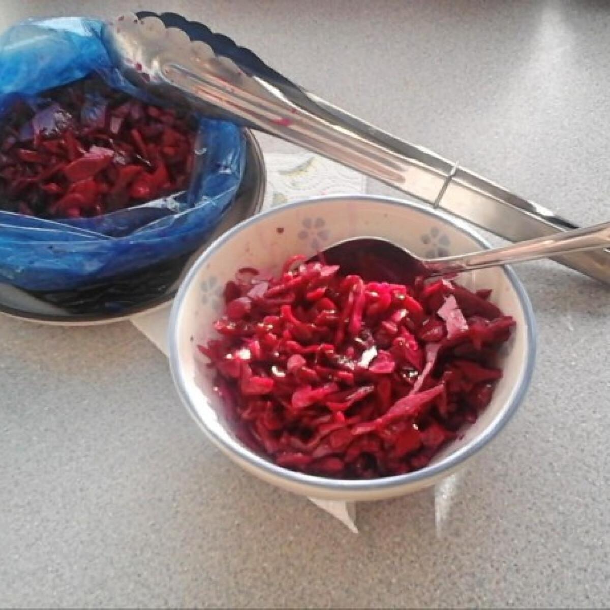 Ezen a képen: Zacskós savanyított vöröskáposzta