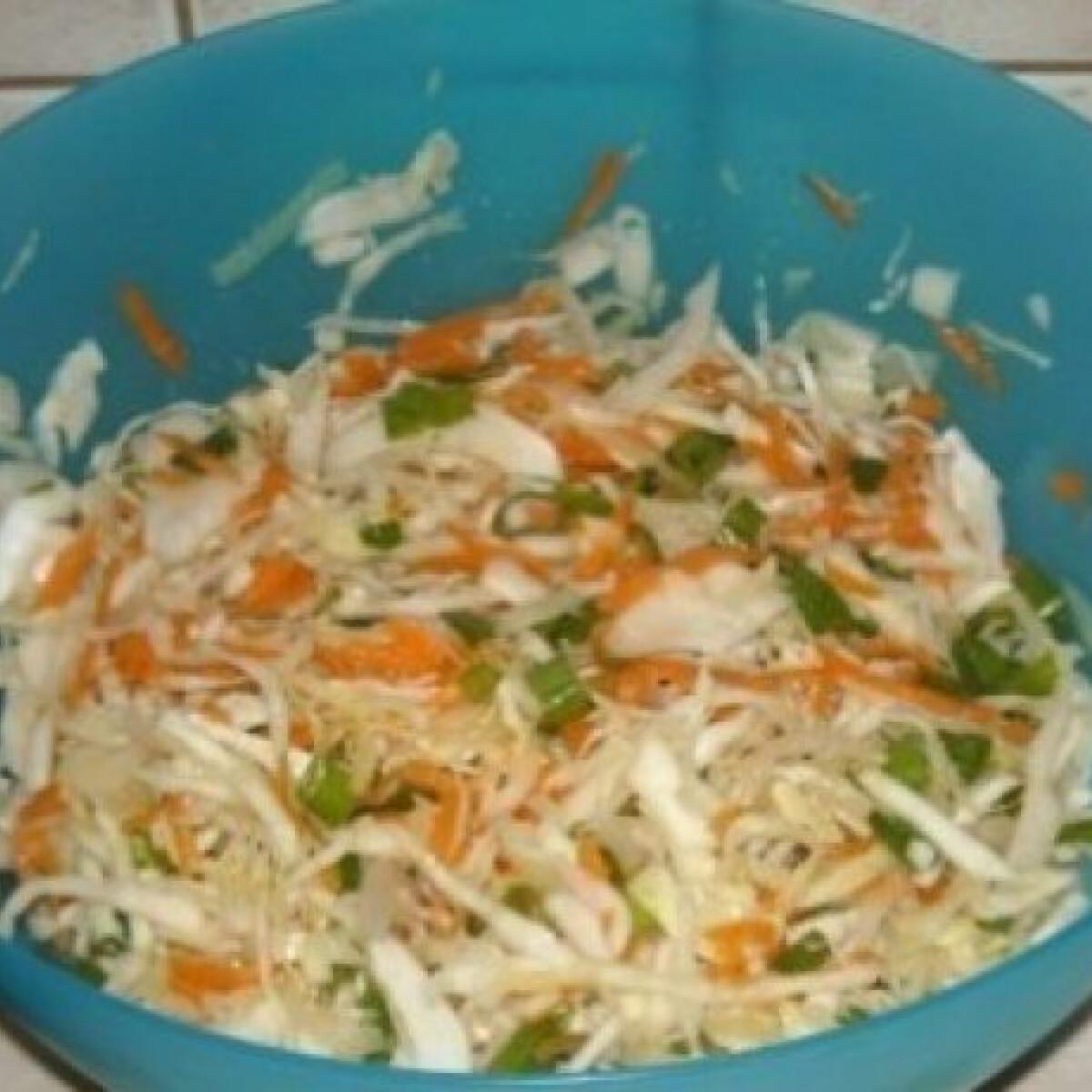 Ezen a képen: Háromszínű saláta fehér káposztából