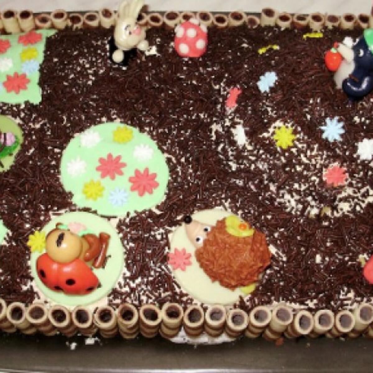 Ezen a képen: Kisvakondos torta
