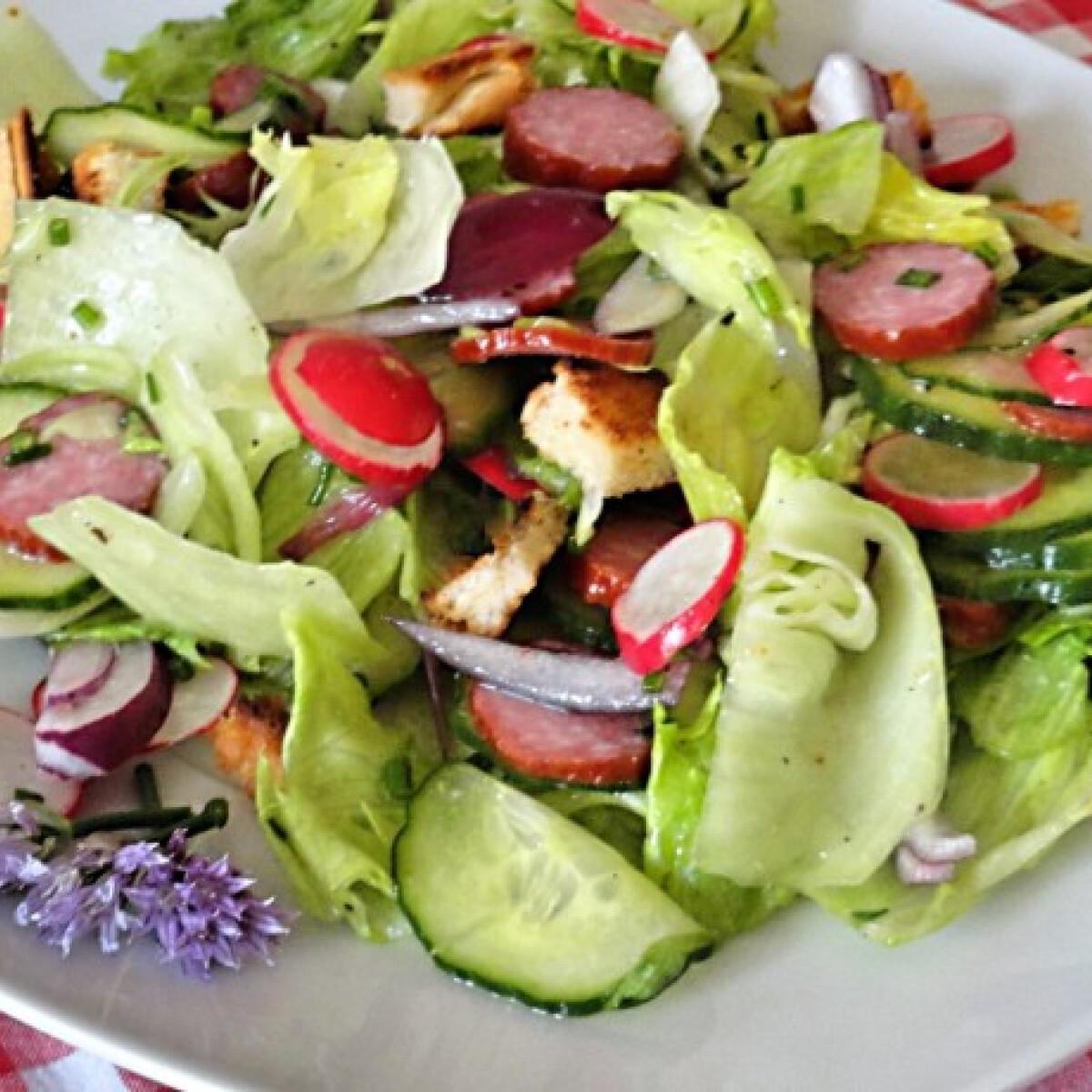 Ezen a képen: Kertész saláta