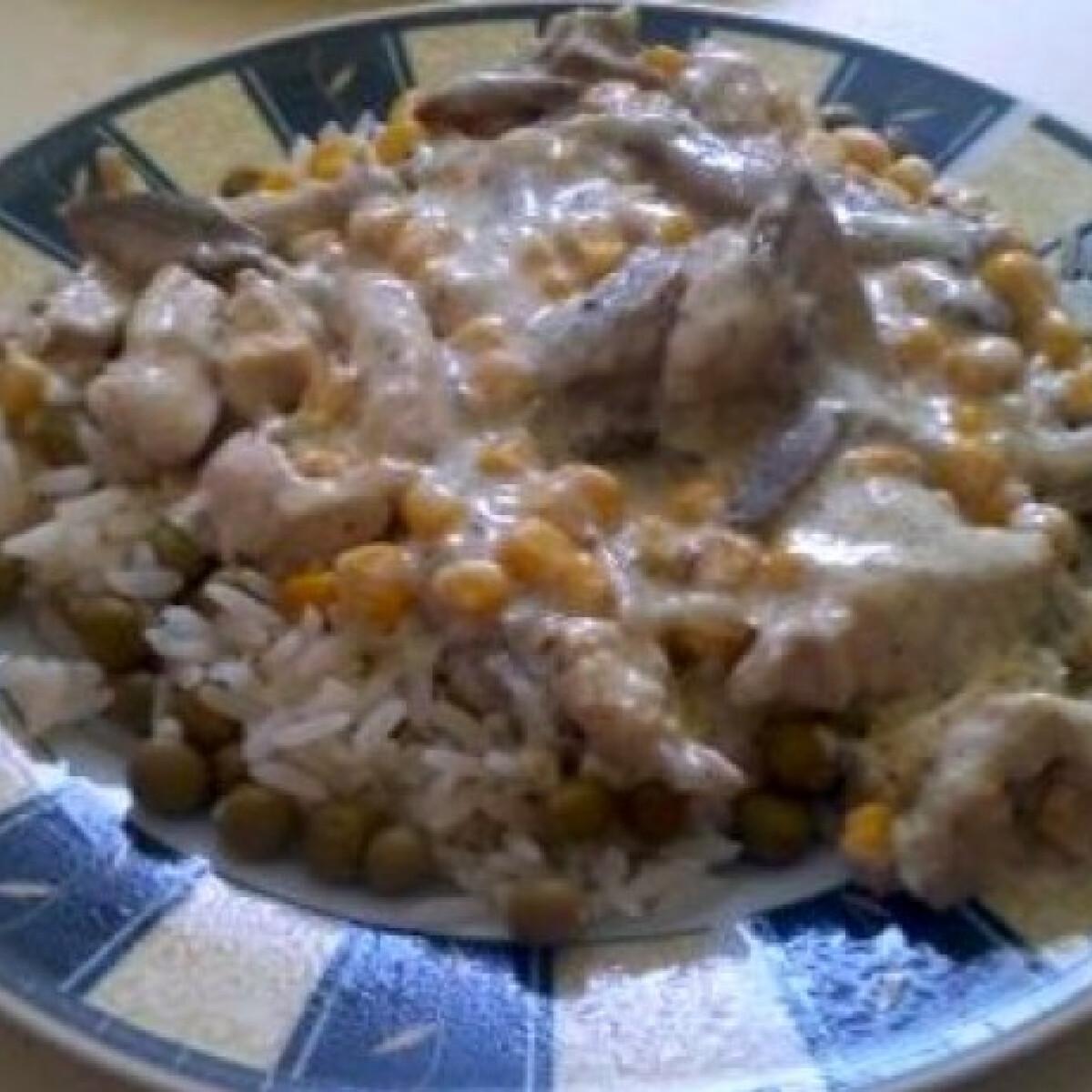 Ezen a képen: Tejszínes csirke rizibizivel
