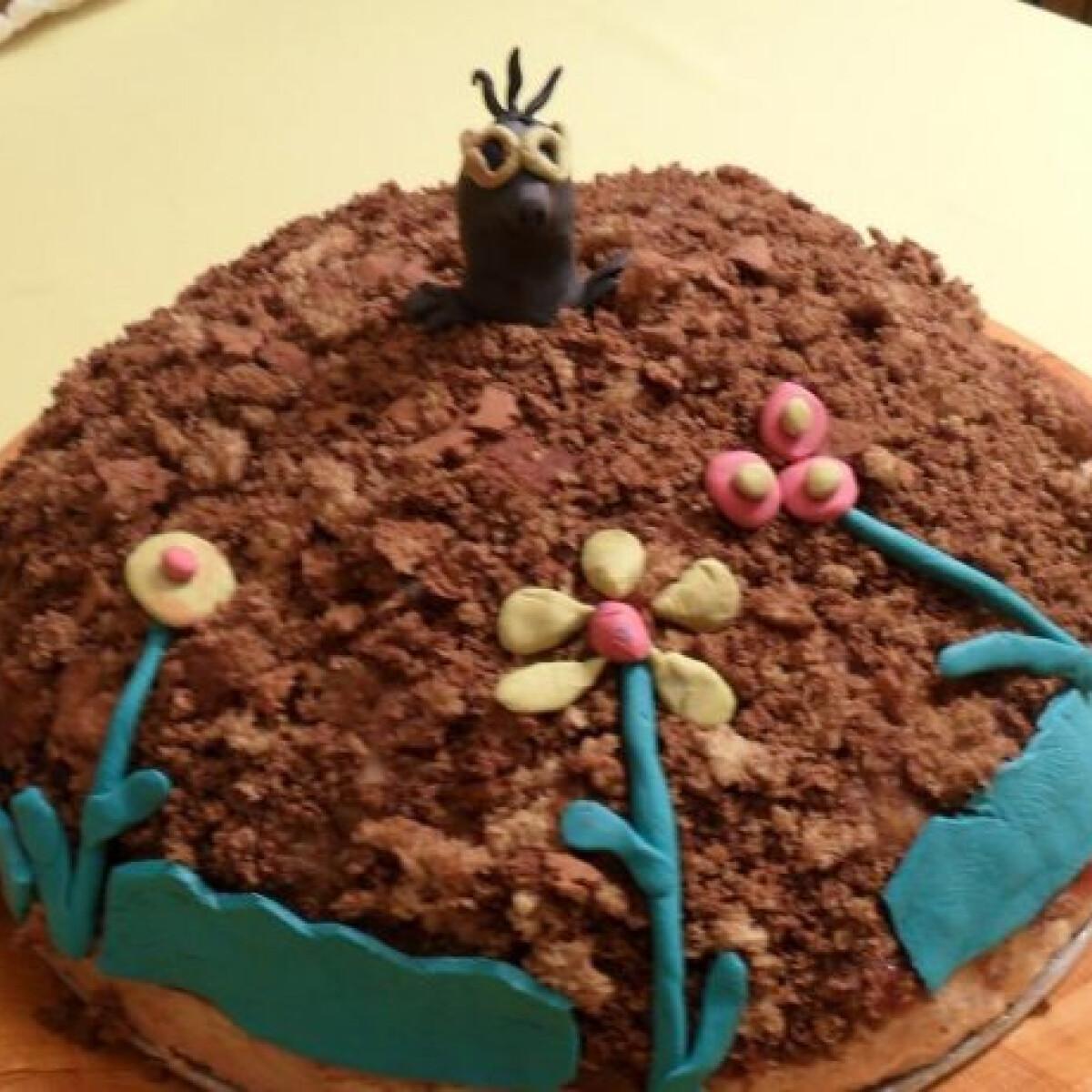 Ezen a képen: Kisvakond tortája