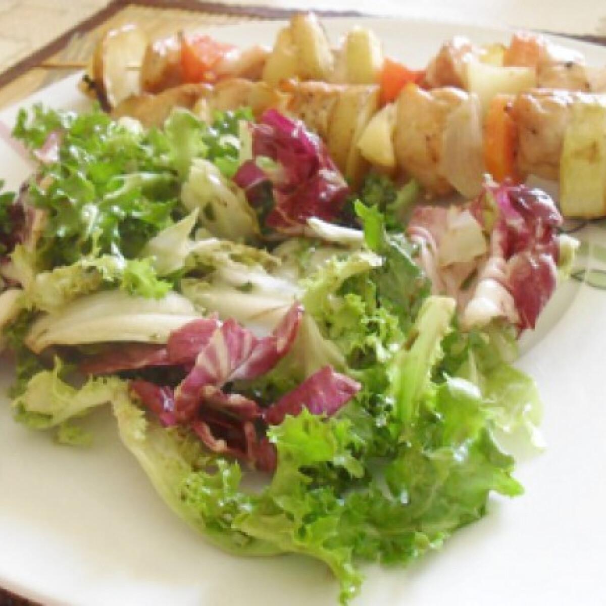 Ezen a képen: Csirkesaslik friss salátával