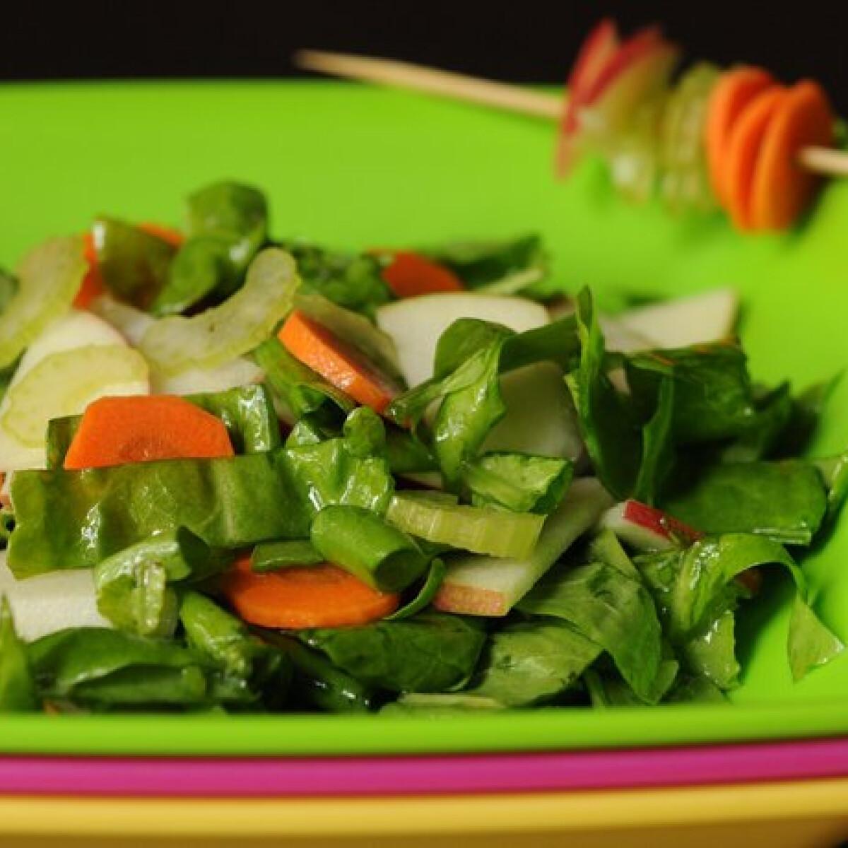 Ezen a képen: Sóska saláta