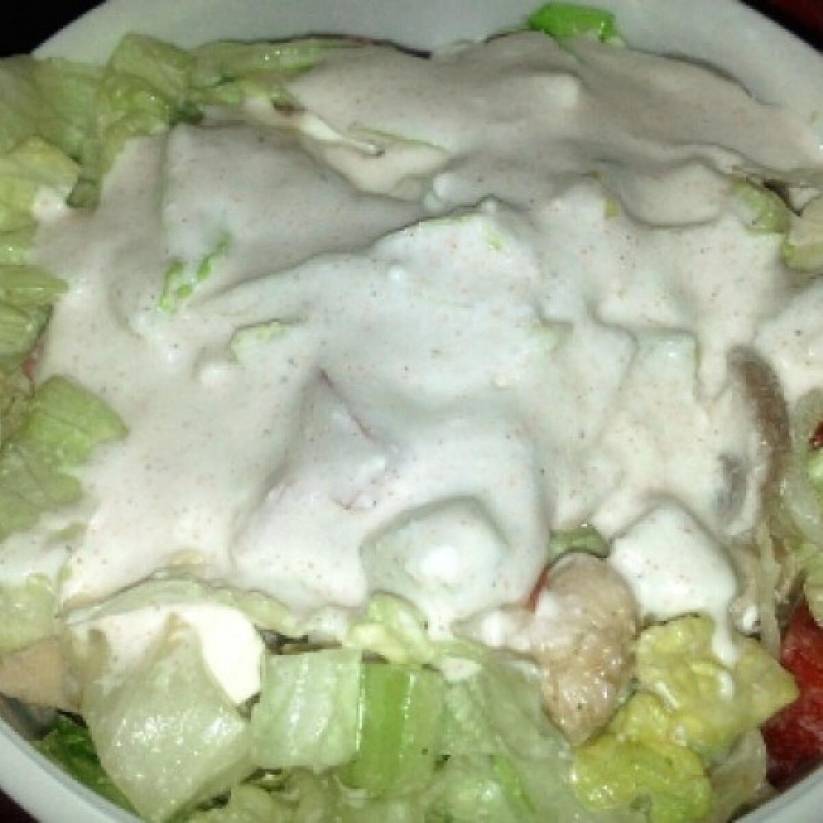 Ezen a képen: Vegyes saláta csirkemellel