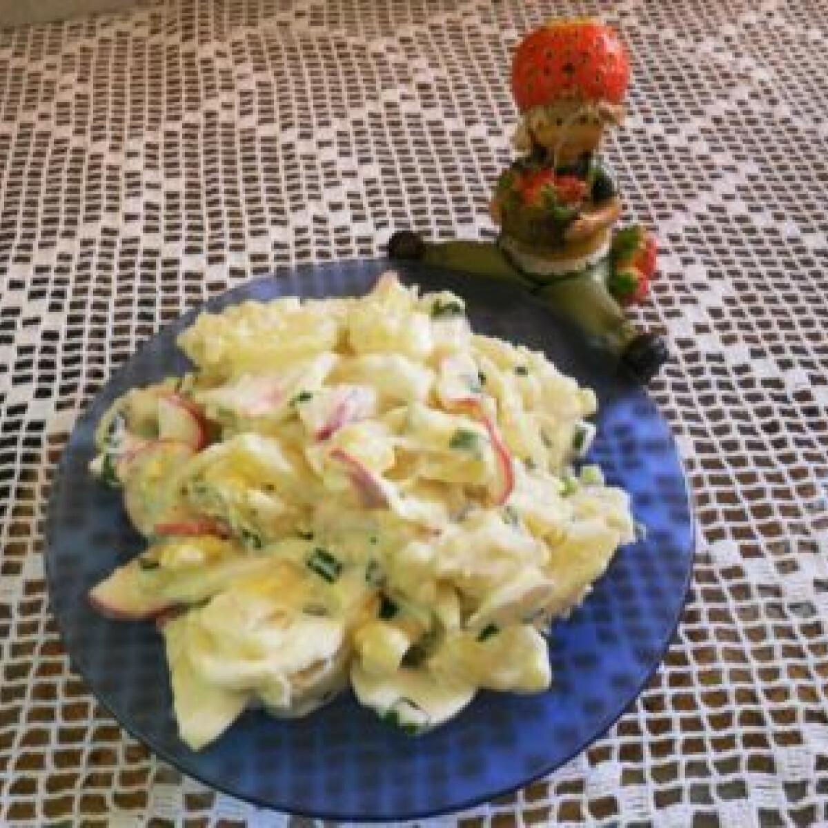 Ezen a képen: Kora nyári újburgonya-saláta