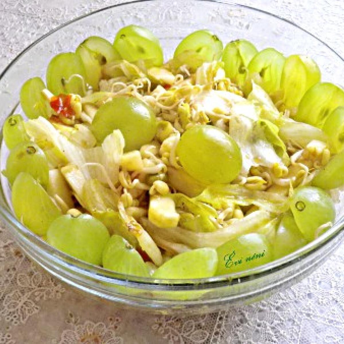Mungóbabcsírás saláta