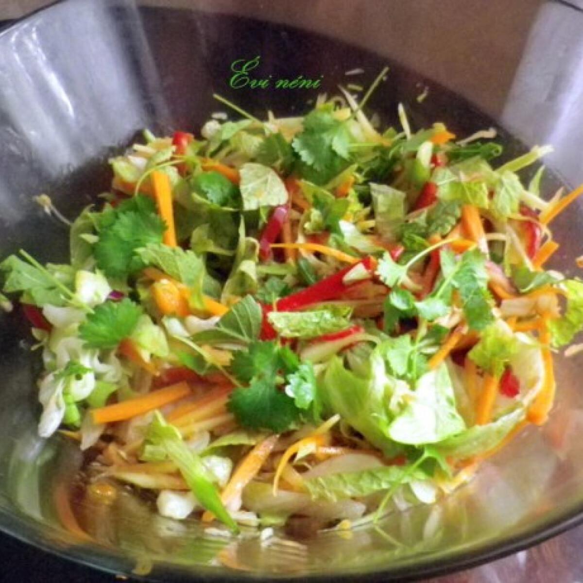 Ezen a képen: Vietnami saláta
