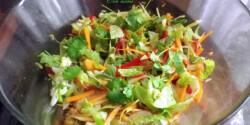 Vietnami saláta