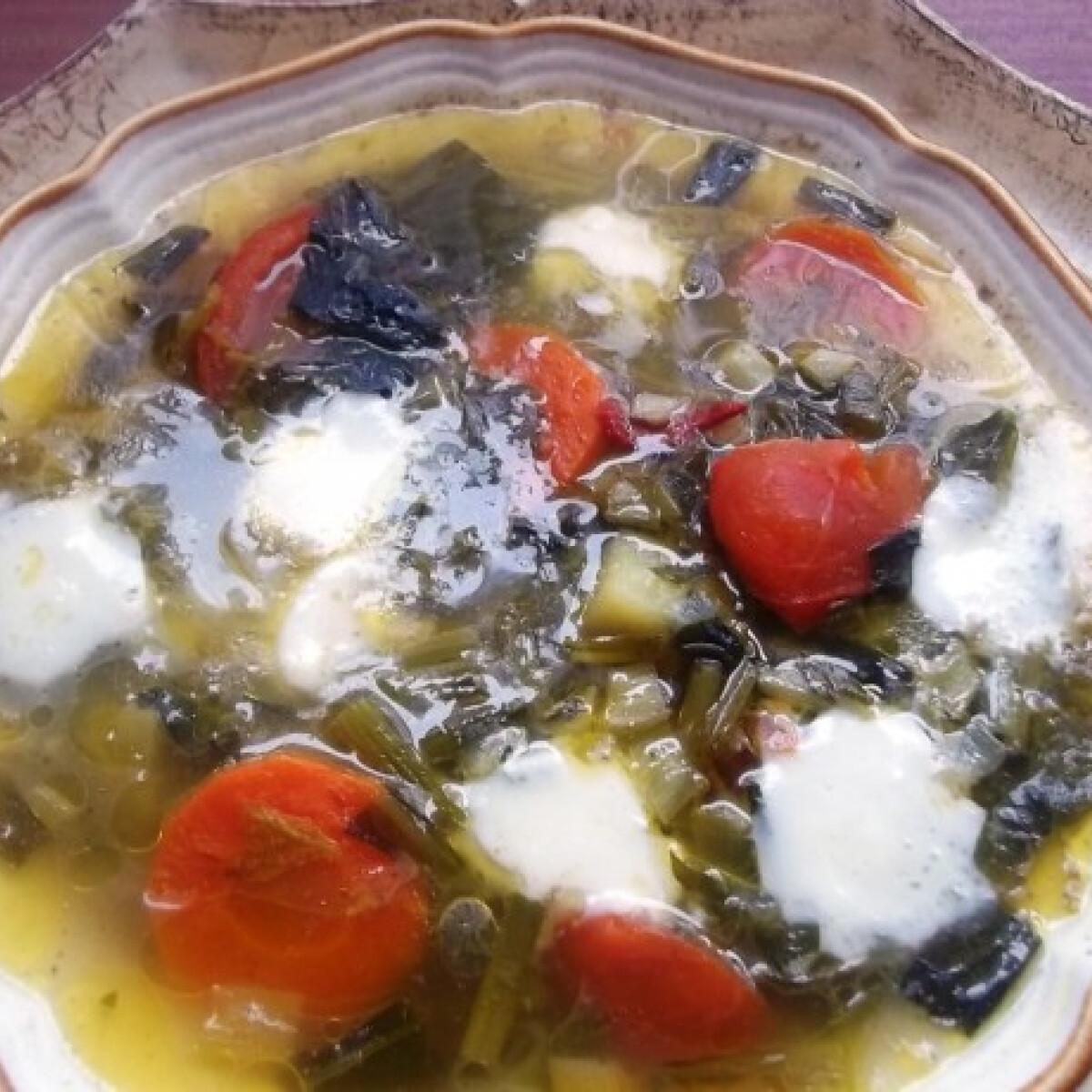 Ezen a képen: Medvehagymás zöldségleves mozzarellával
