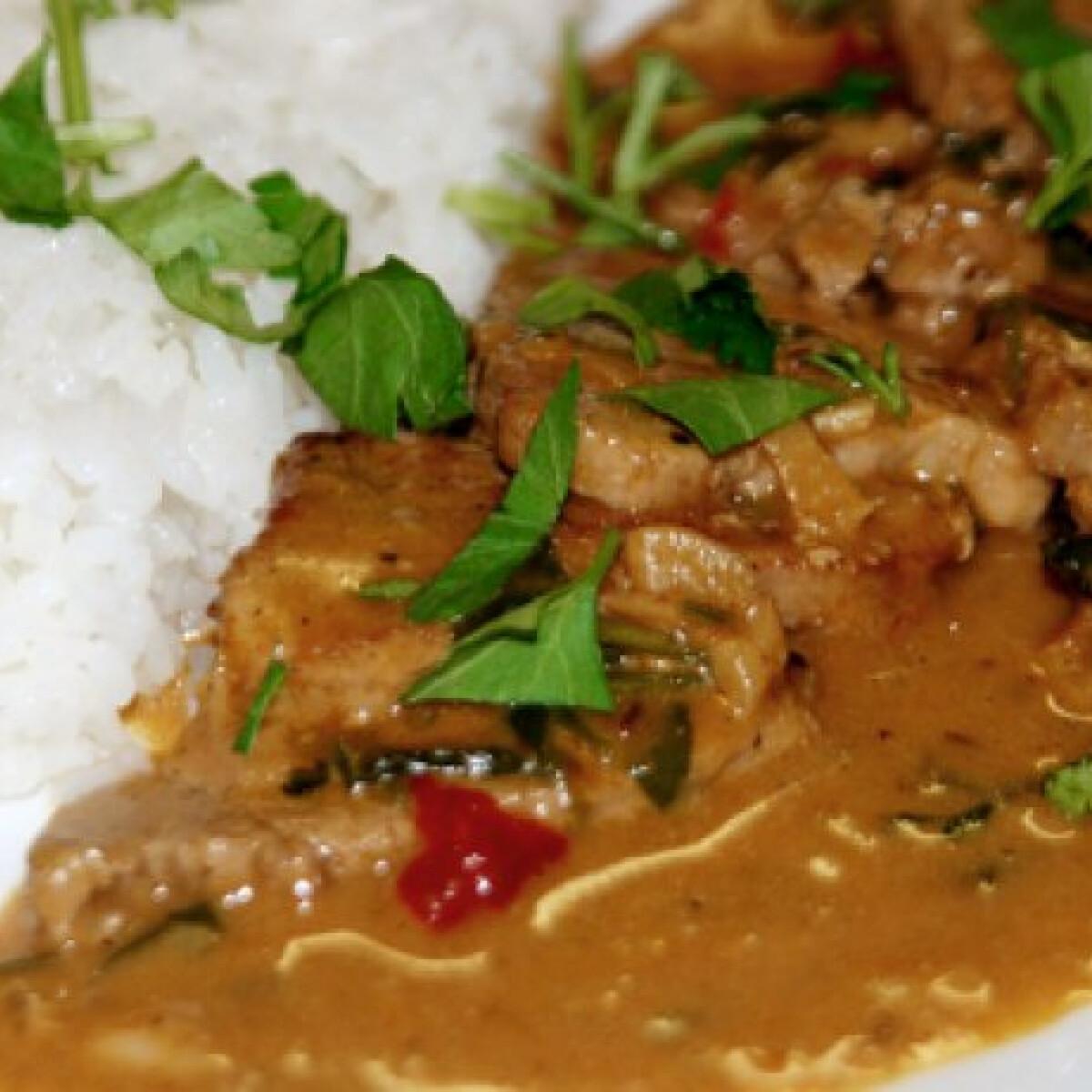 Ezen a képen: Sertés curry