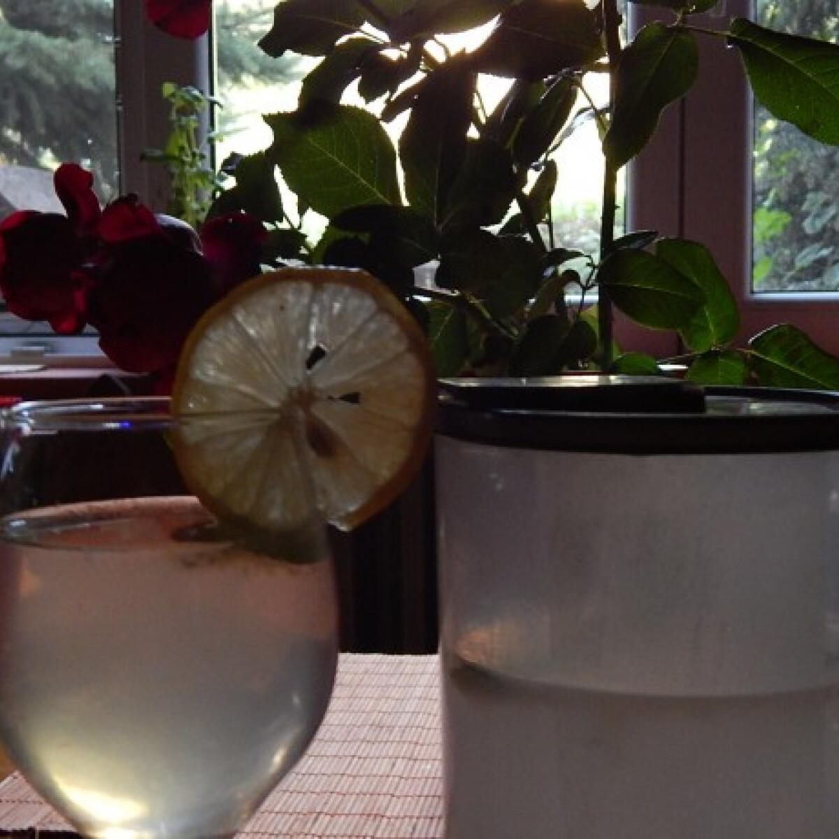 Ezen a képen: Hagyományos limonádé