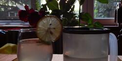 Hagyományos limonádé