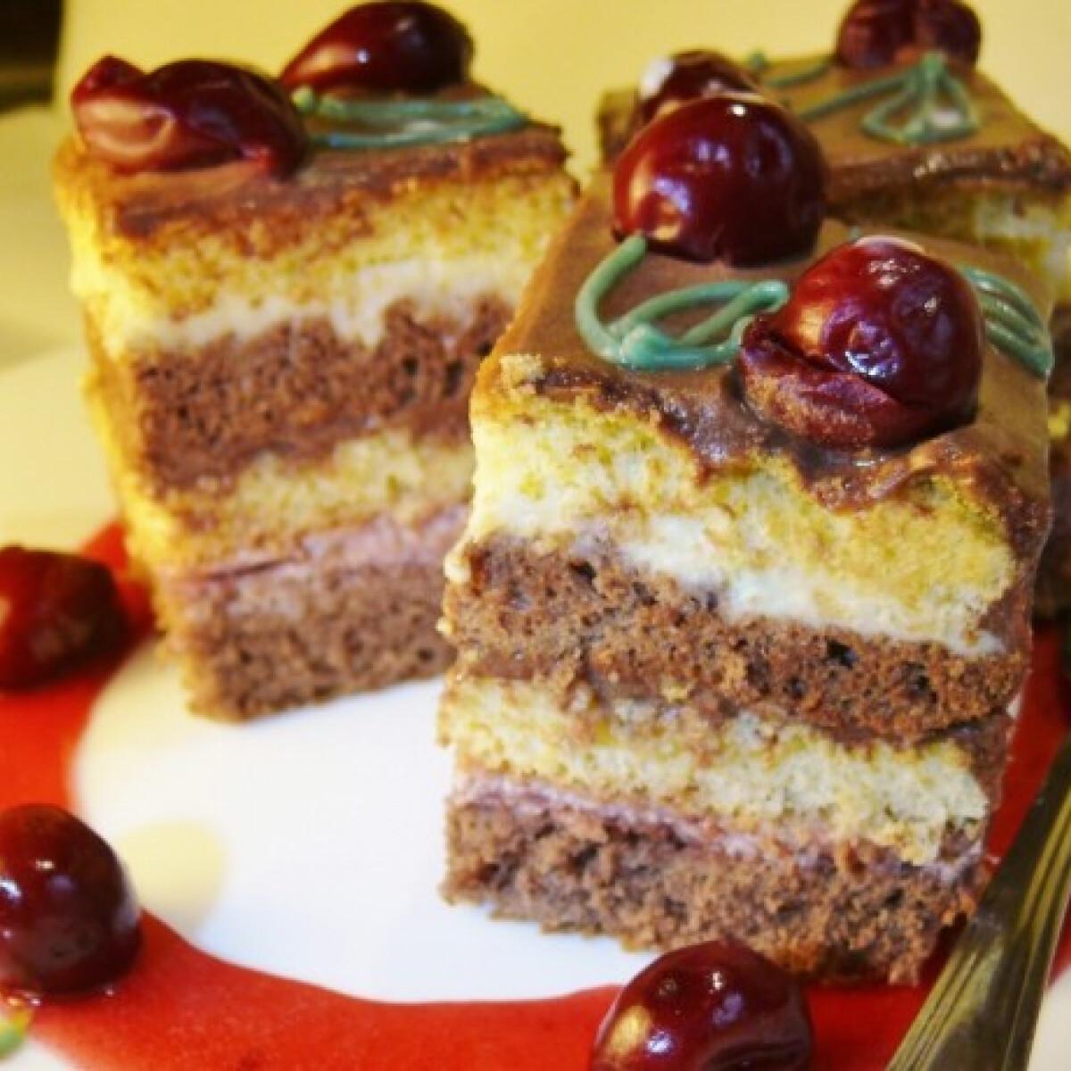 Ezen a képen: Meggyes-csokis piskótakocka
