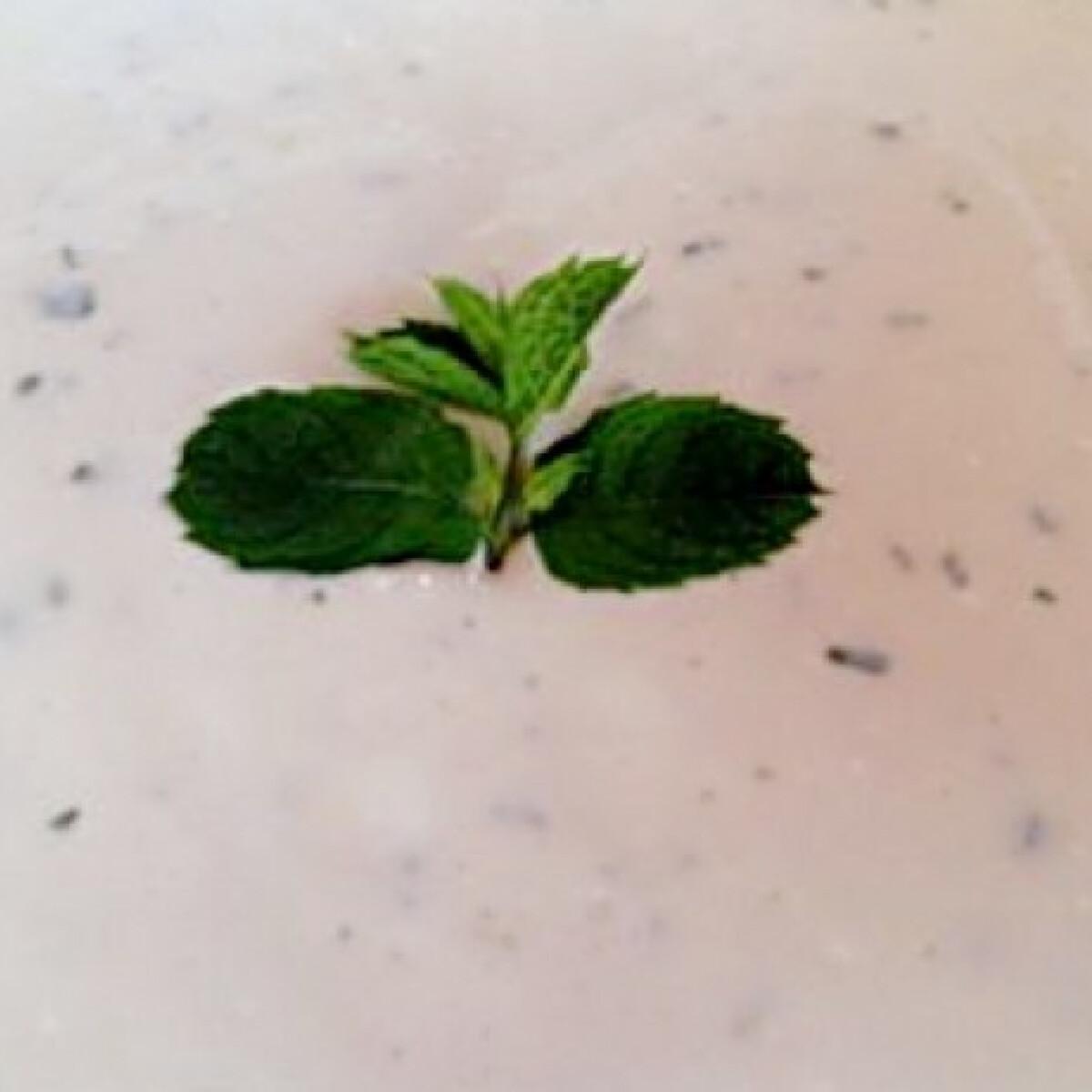 Ezen a képen: Joghurtos mentaszósz grillezéshez