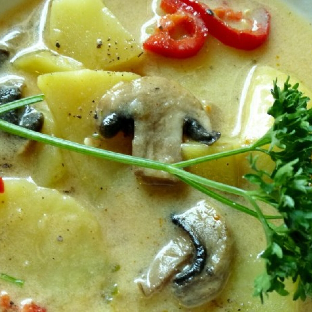 Ezen a képen: Krumplileves gombával Márti konyhájából