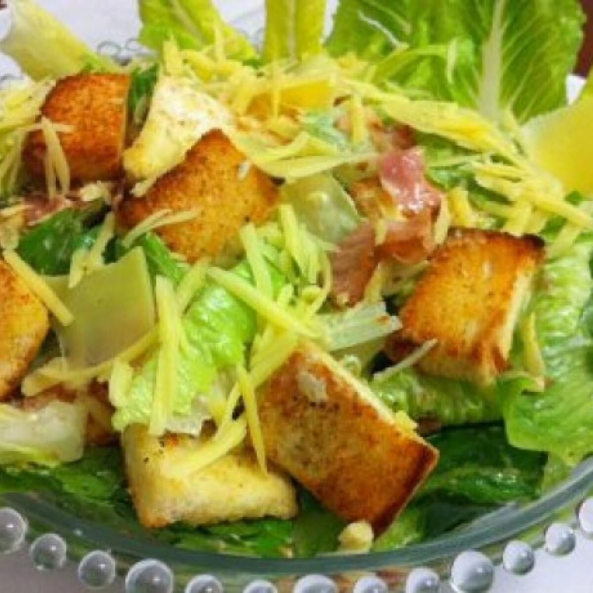 Ezen a képen: Caesar saláta pussycattól
