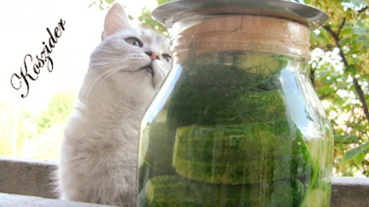 Nagy üveg kovászos uborka