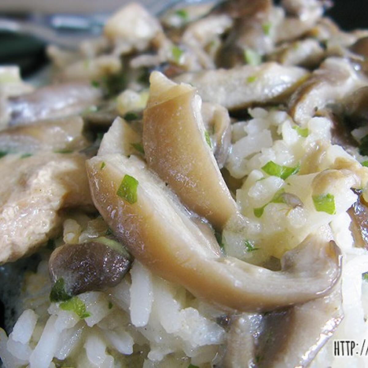 Ezen a képen: Tejszínes-gombás hús Lilalicsi konyhájából