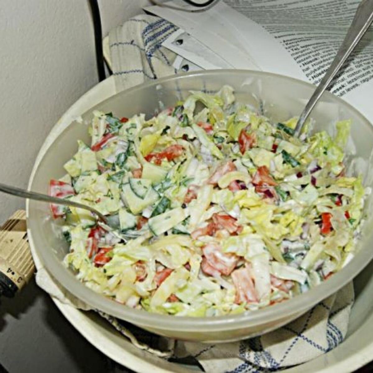 Ezen a képen: Zöldséges saláta kefíres joghurtos öntettel