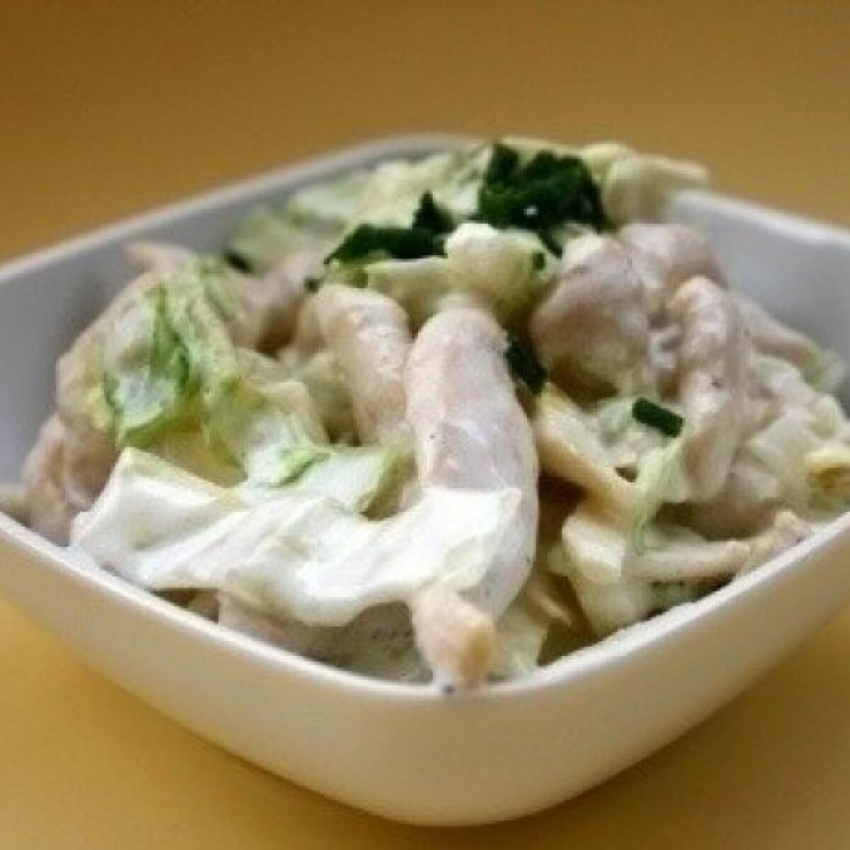 Ezen a képen: Camembertes saláta csirkehússal