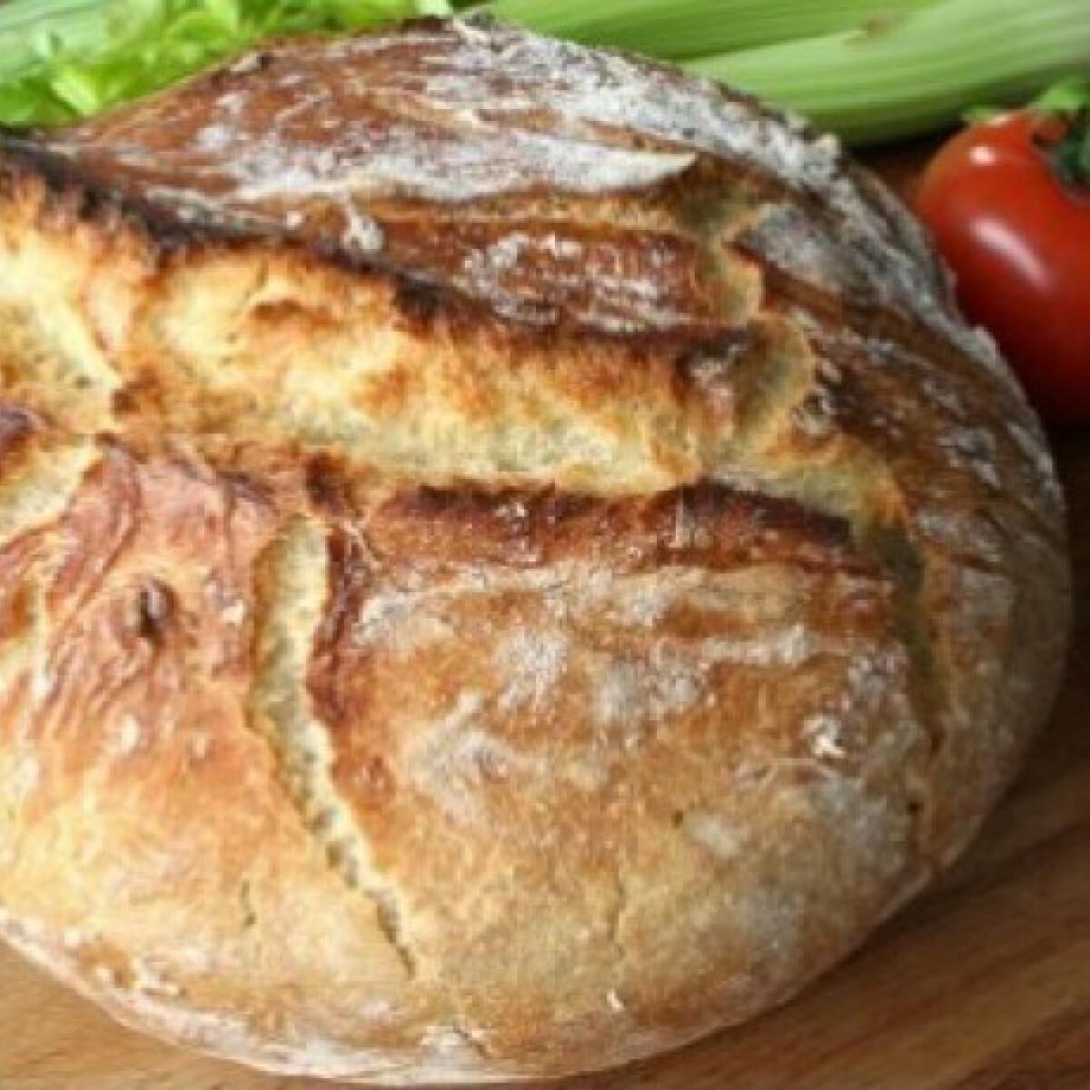 Ezen a képen: Dagasztás nélküli kenyér 4.