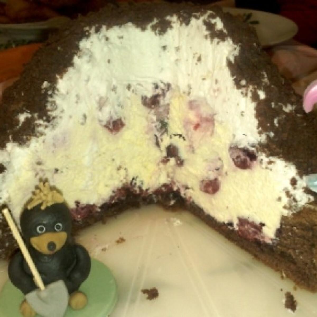 Ezen a képen: Szülinapi vakondtúrás torta
