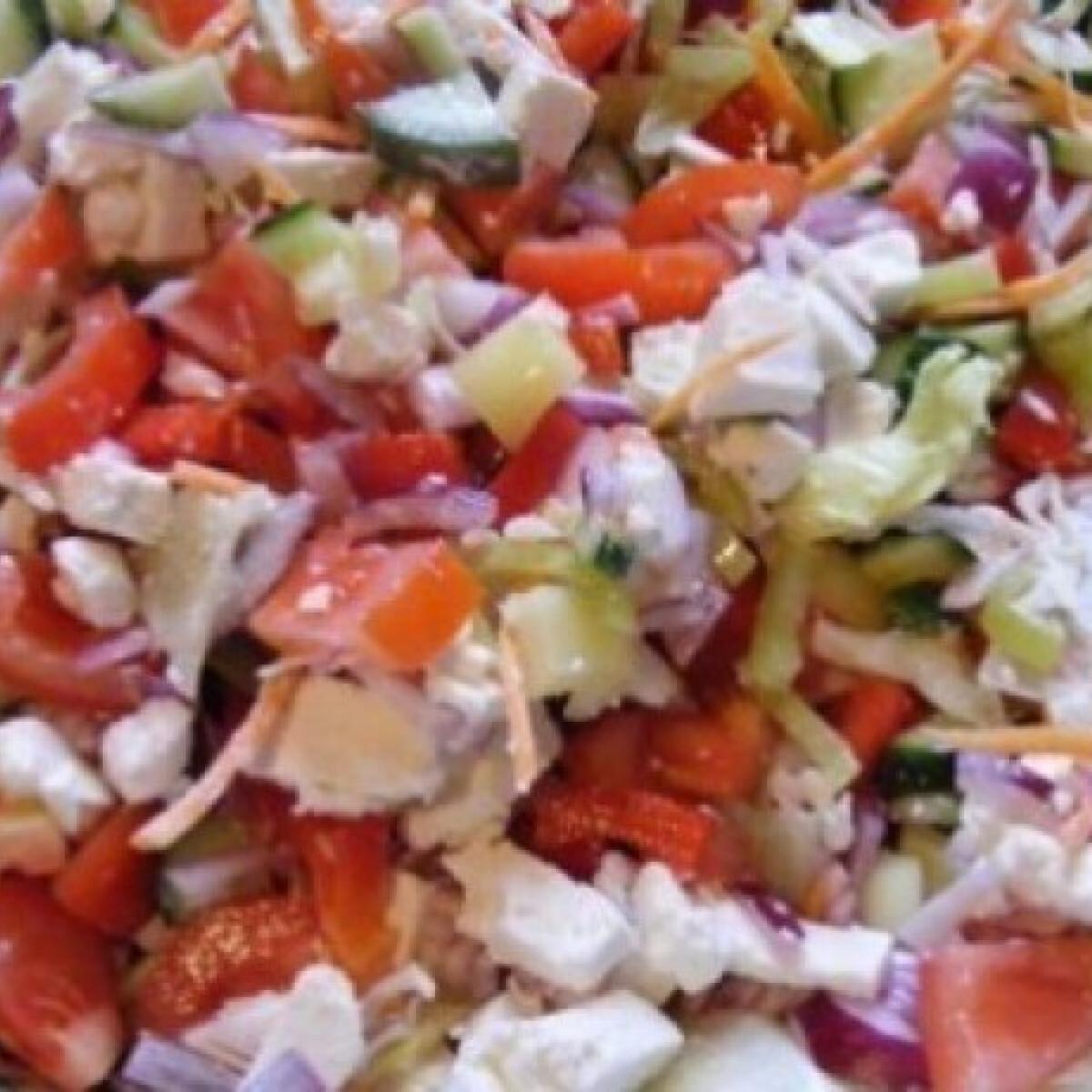 Ezen a képen: Saláta tzatziki mártással