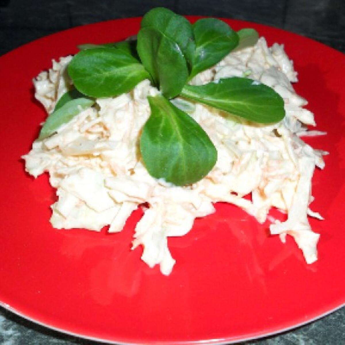 Ezen a képen: Cole slaw saláta