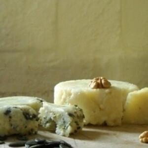 Házi sajt - natúr és tökmagos