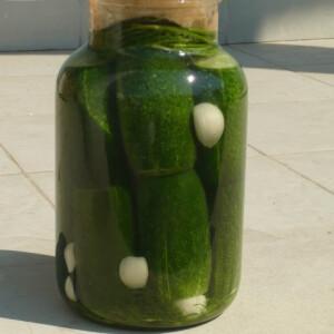 kovaszos-uborka-egyszeruen