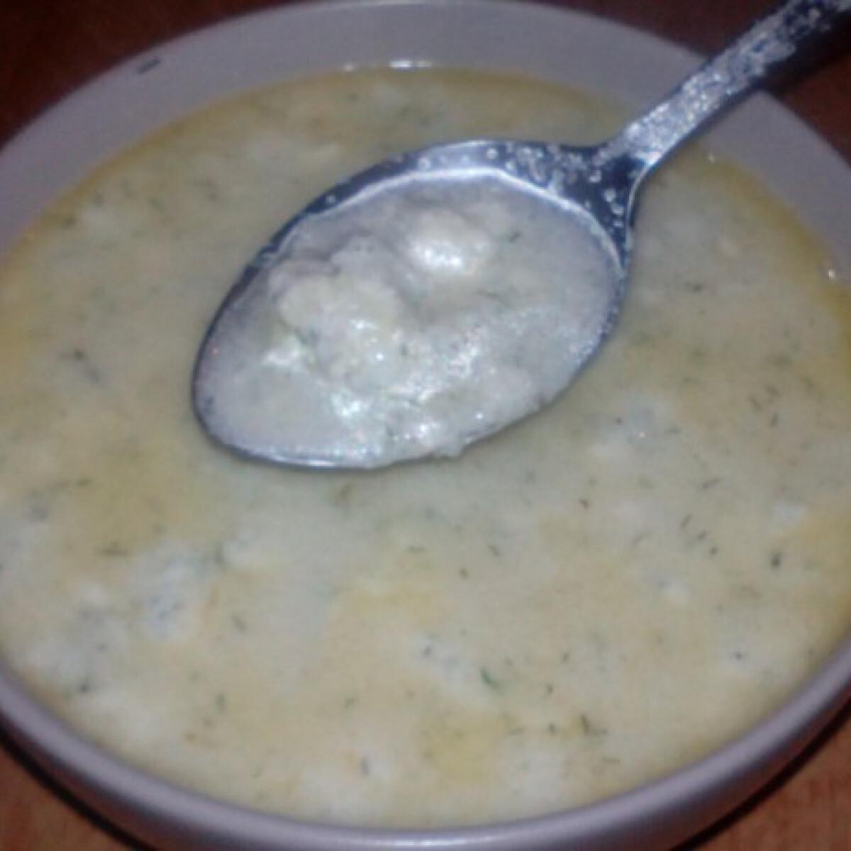 Kapros túrógombóc leves