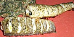 Sült hekk spenótos hajdinával