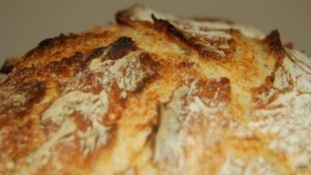 kenyer nelkuli fogyokura hogyan fogyjak gyorsan sokat