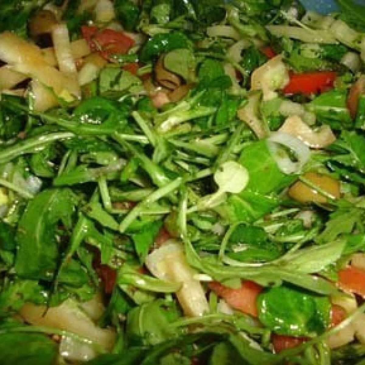 Ezen a képen: Nagyonzöld Saláta
