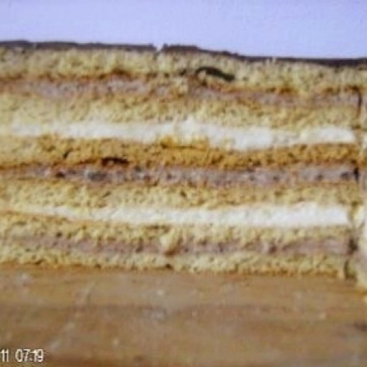 Ezen a képen: Csokis-citromos szelet