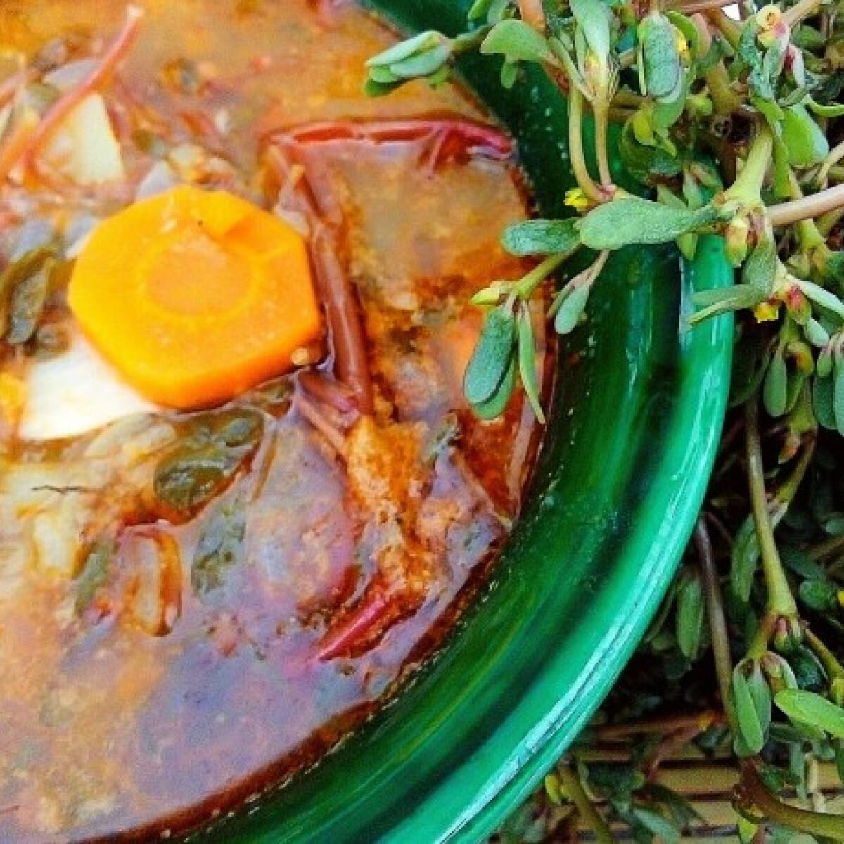 Portugál porcsin leves