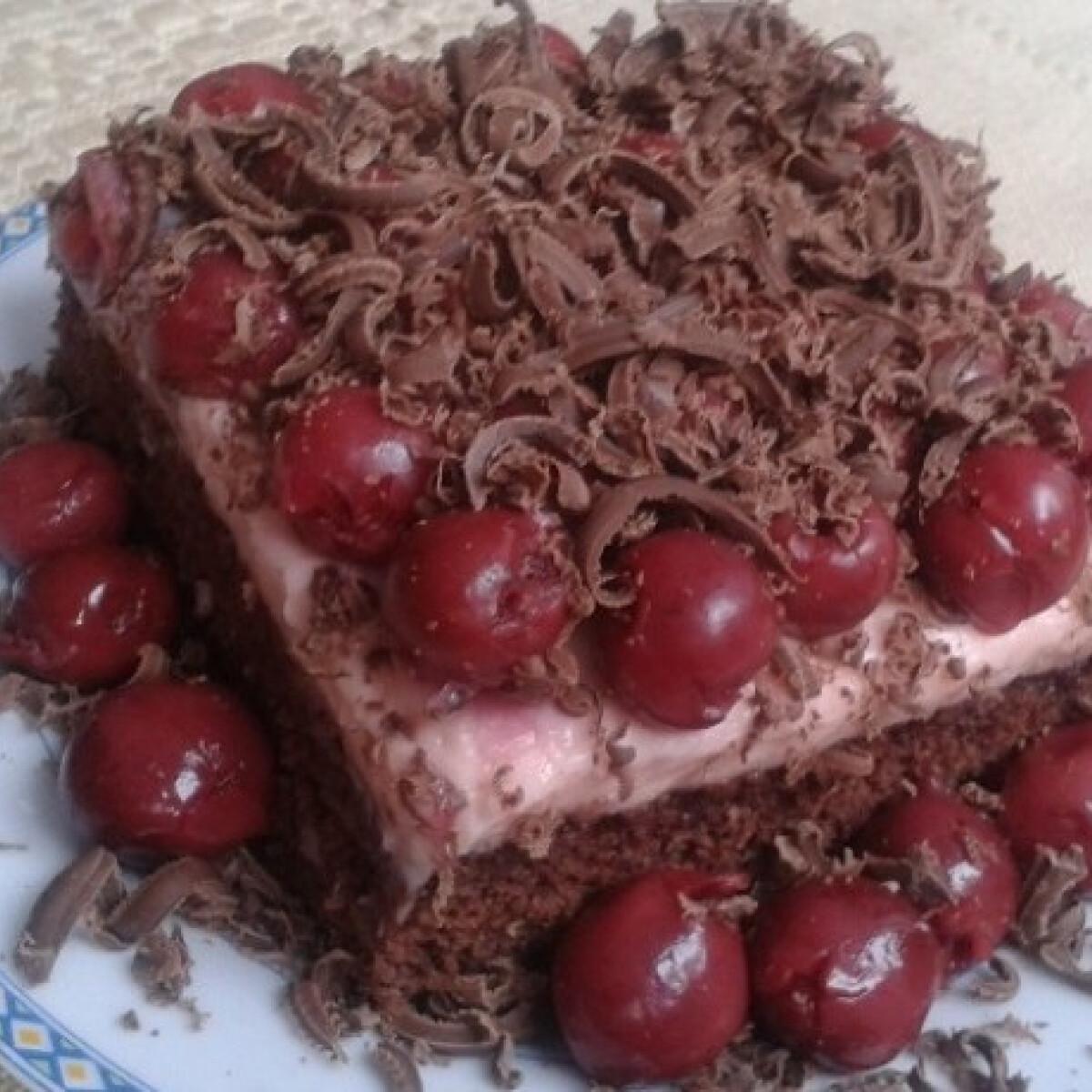 Ezen a képen: Meggyes-pudingos piskóta csokoládéval