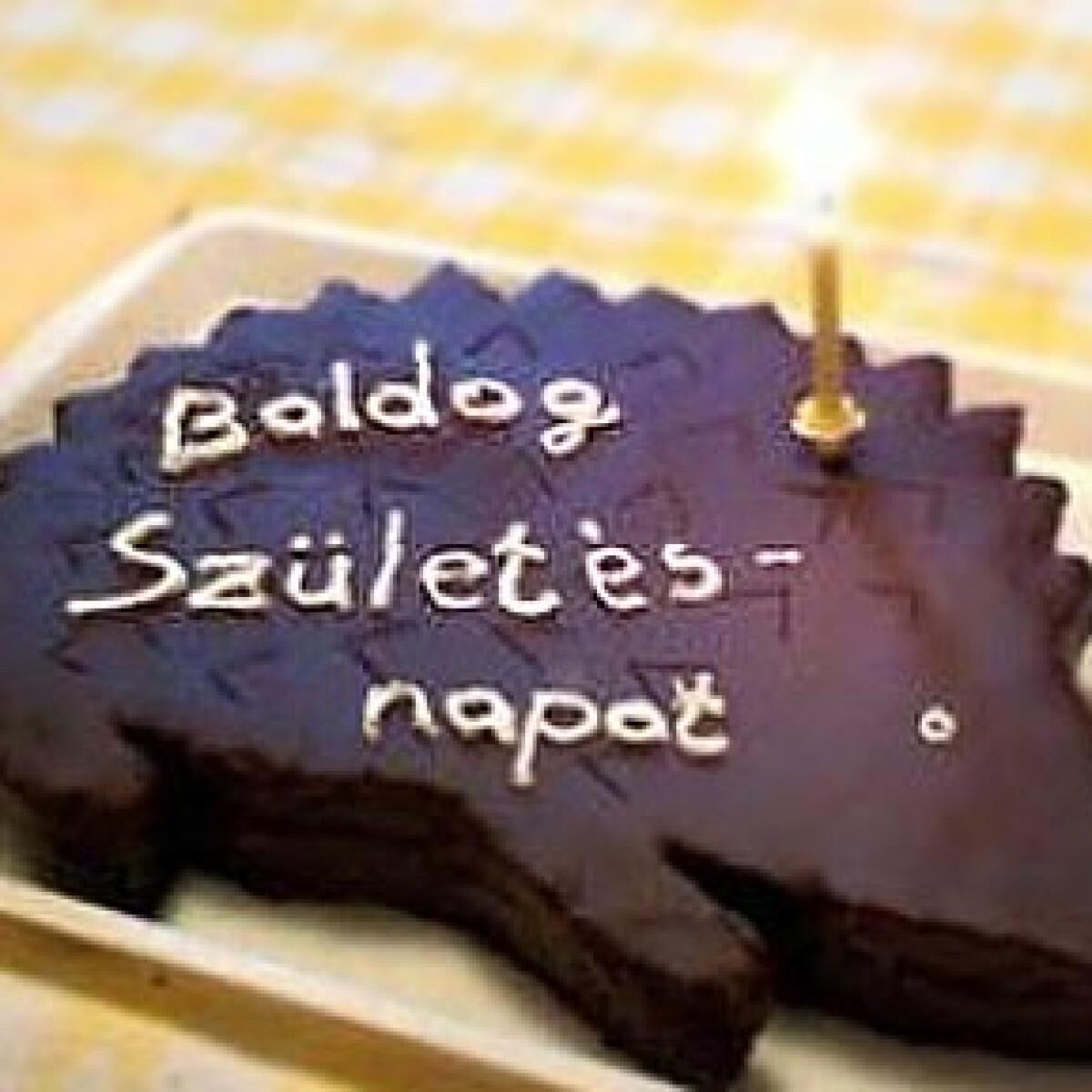 Ezen a képen: Sacher-süni -Sacher-torta 2.