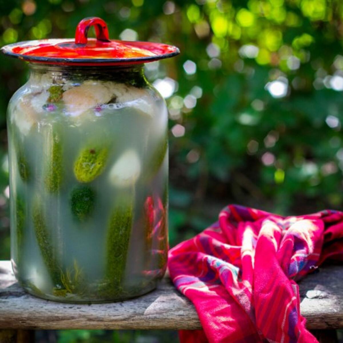 Ezen a képen: Ropogós kovászos uborka