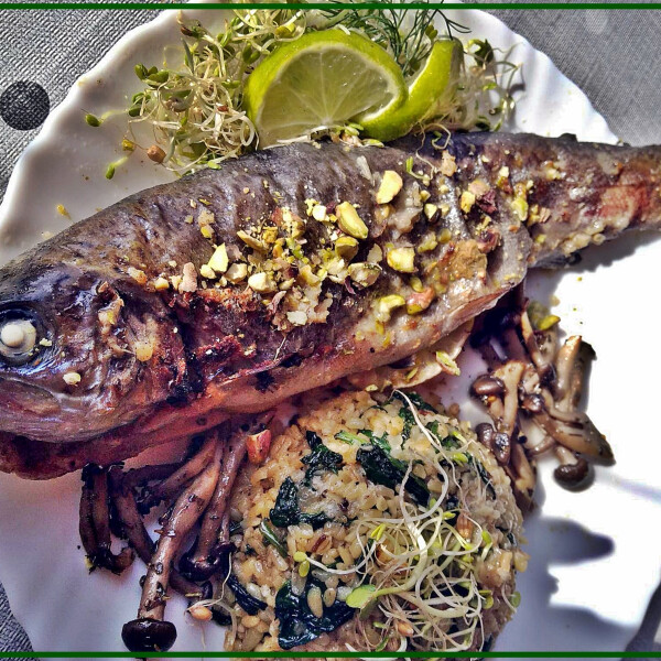 Pisztáciás pisztráng grillezett shimeii gombával, spenótos bulgurral, vegyes csírával