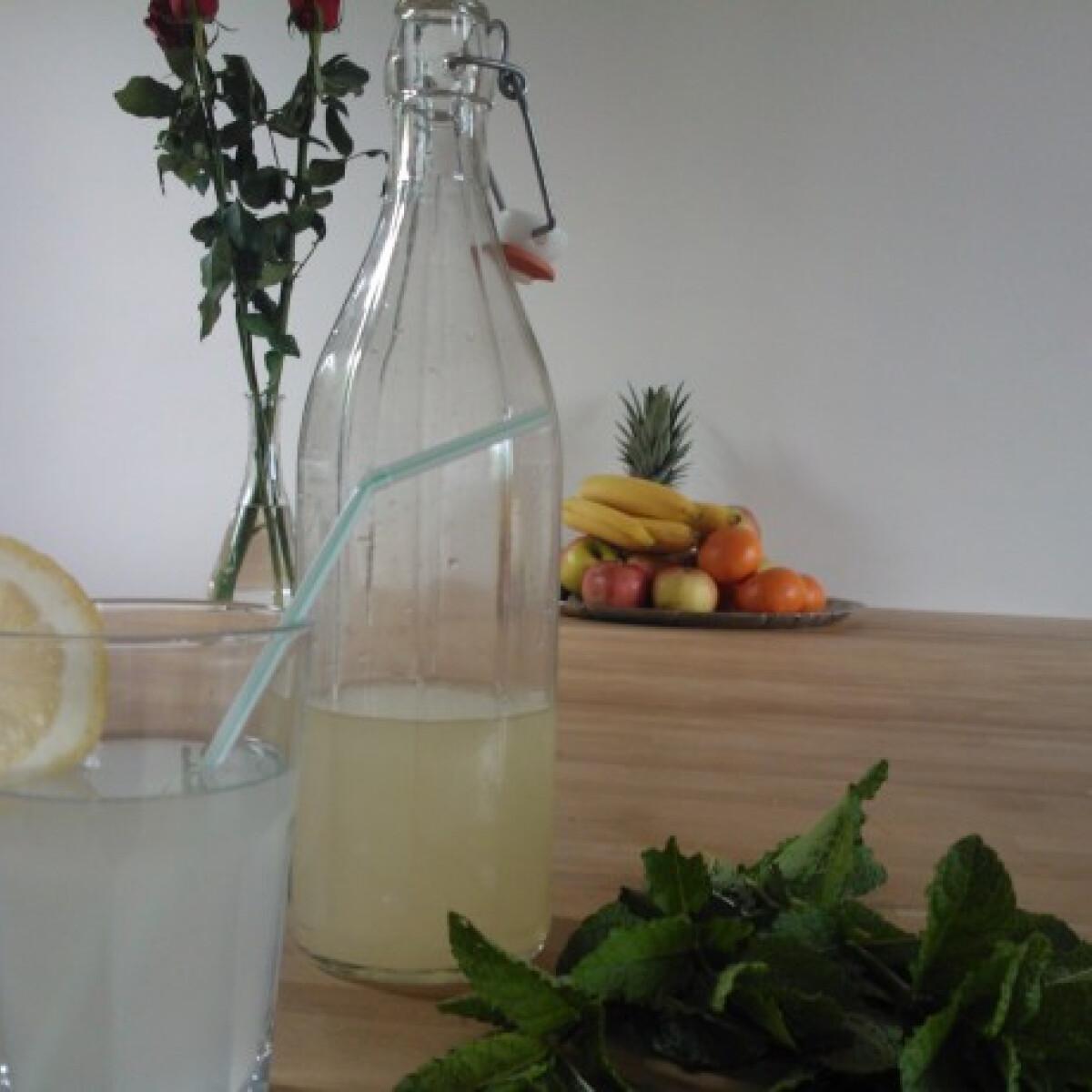 Ezen a képen: Mentaszörp Allisc konyhájából
