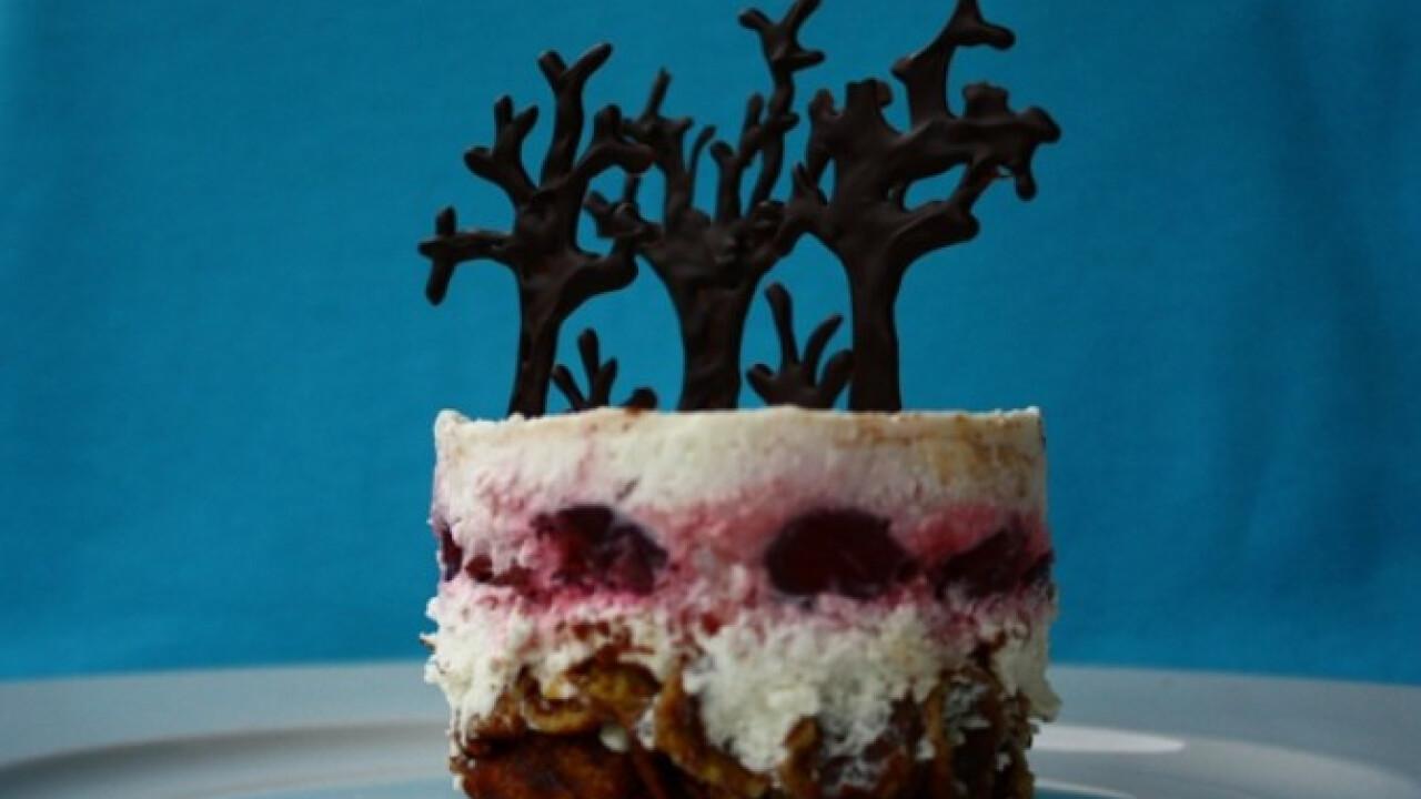 Fekete-csoki-erdő mini torta