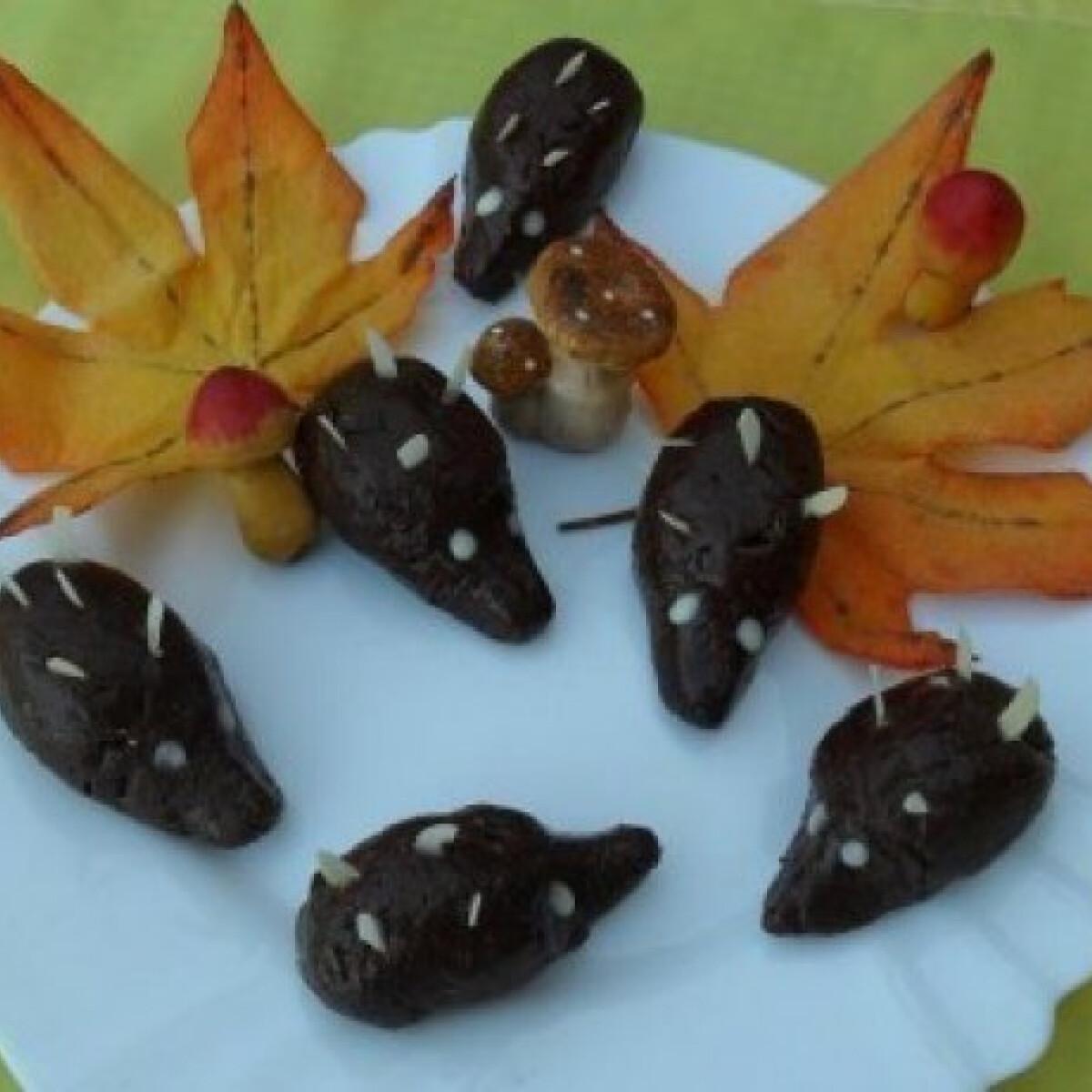 Ezen a képen: Kakaós sünike