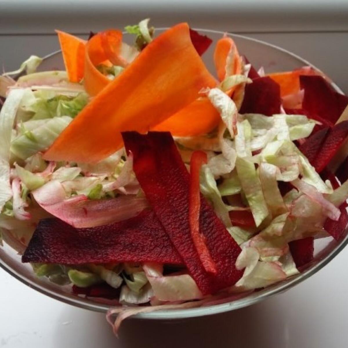 Ezen a képen: Nyers zöldségsaláta