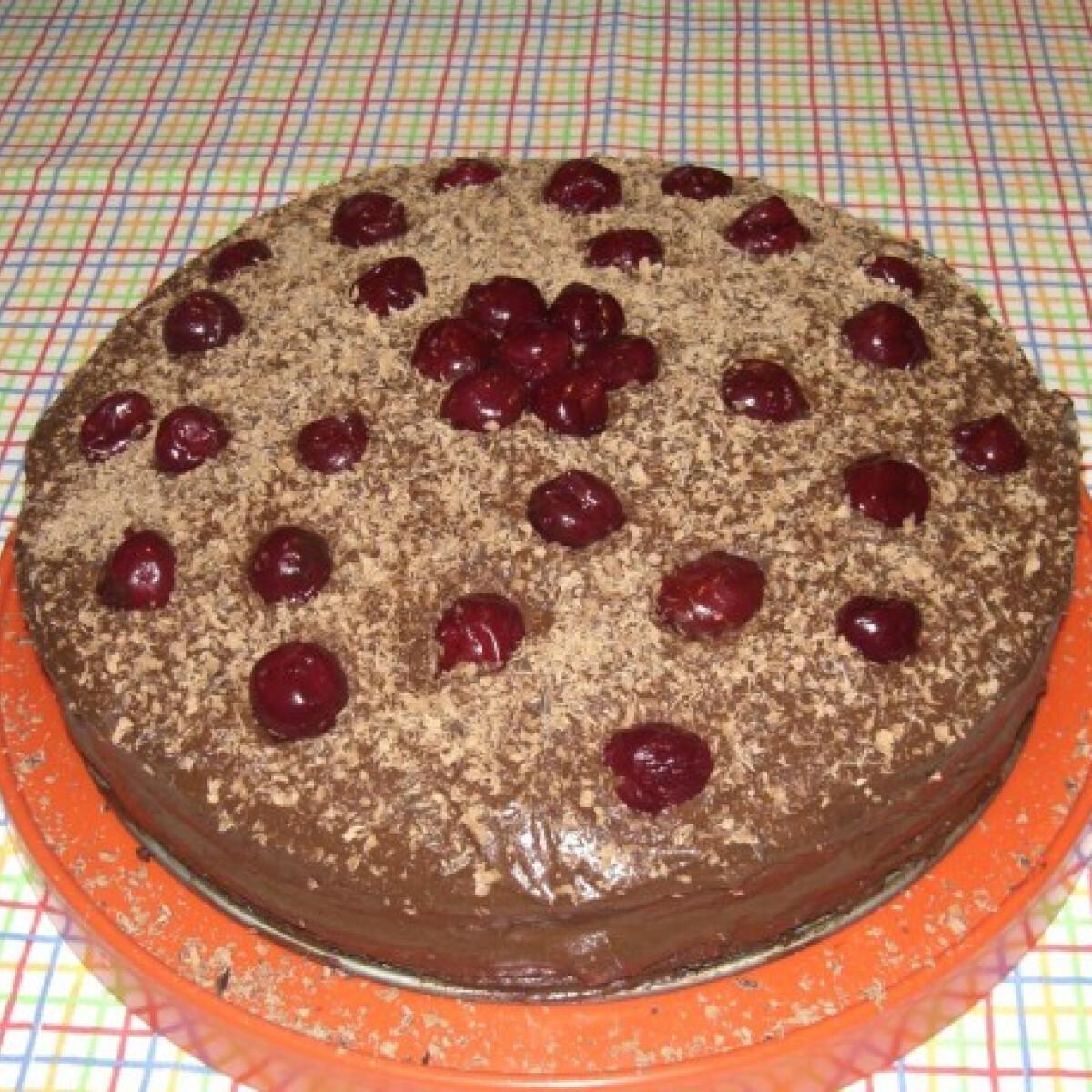 Ezen a képen: Csoki-meggyes torta Szofitól