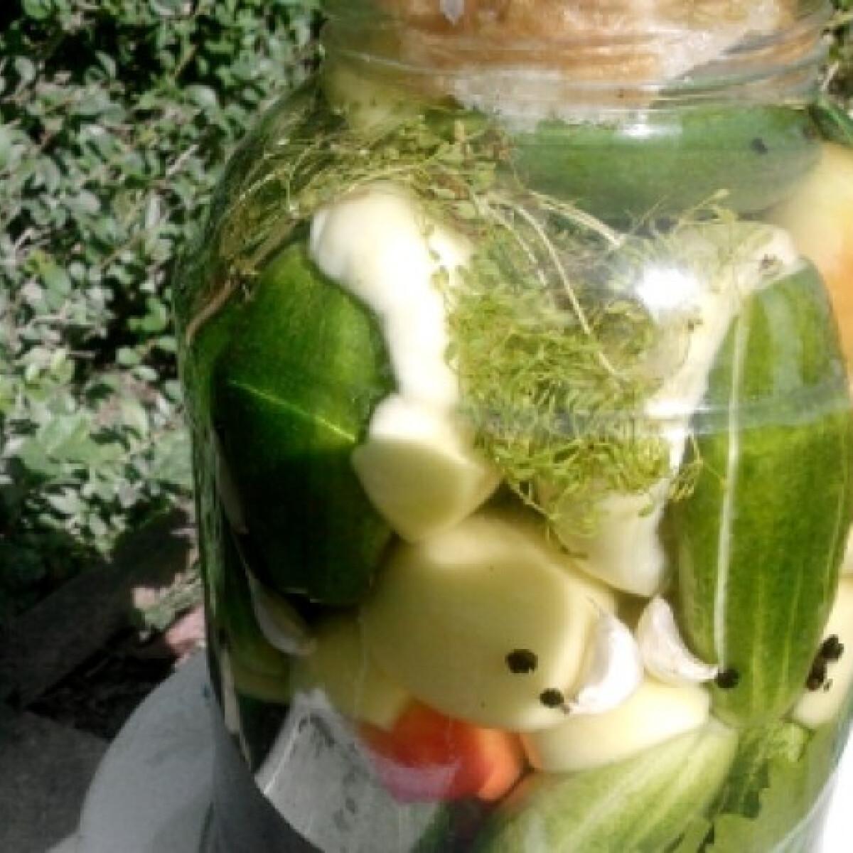 Ezen a képen: Kovászos almapaprika uborkával
