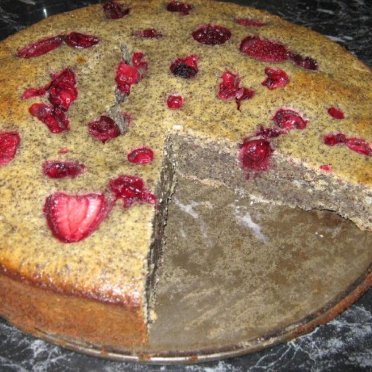 Ezen a képen: Mákos süti erdei gyümölccsel